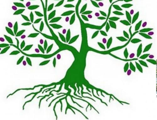 Zondag a.s. Israëlzondag 'Roots'
