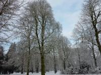 boswandeling voor het goede doel ermelo