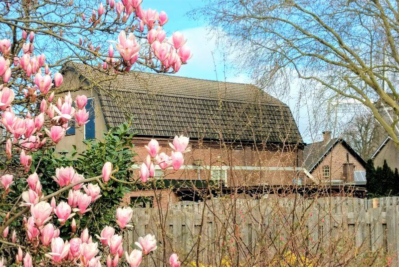 kerkgebouw van NGK Ermelo